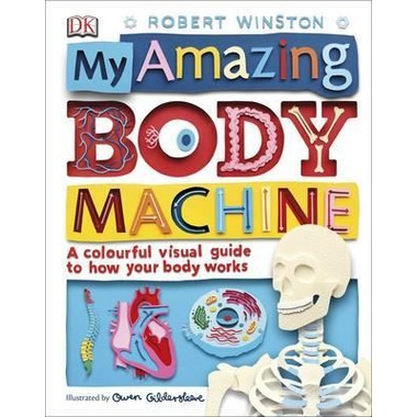 My Amazing Body Machine :A colourful visual guide to how your body works