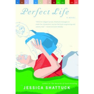 Perfect Life :A Novel