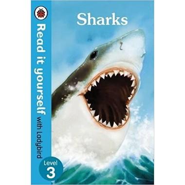 RIY LB L3: SHARKS