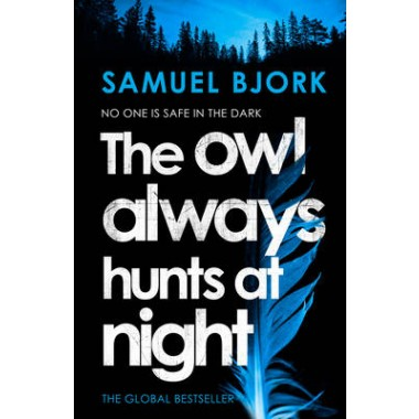 The Owl Always Hunts at Night :(Munch and Kruger Book 2)