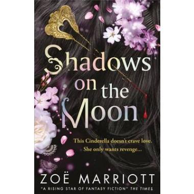Shadows on the Moon