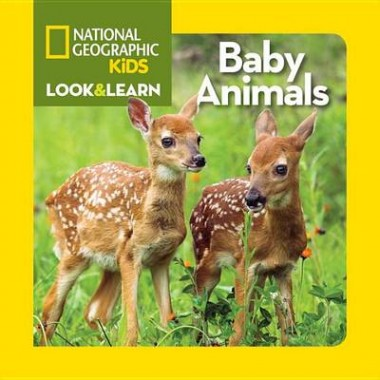 Look and Learn: Baby Animals