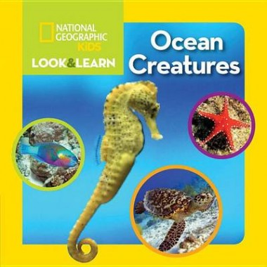 Look and Learn: Ocean Creatures