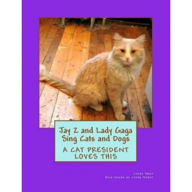 Jay Z and Lady Gaga Sing Cats and Dogs :Dedicated to Mary Tyler Moore