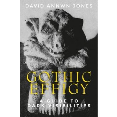 Gothic Effigy :A Guide to Dark Visibilities