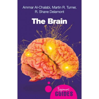 The Brain :A Beginner's Guide