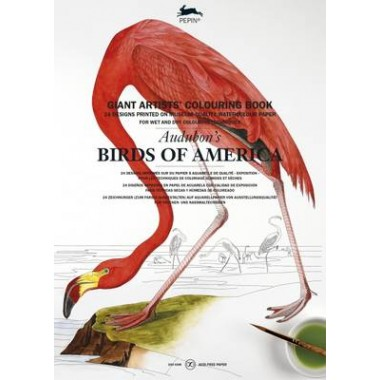 Audubon's Birds of America :Giant Artists' Colouring Book