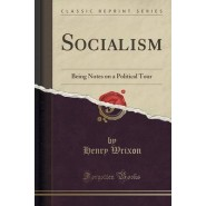 Socialism :Being Notes on a Political Tour (Classic Reprint)