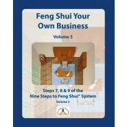 Feng Shui Your Own Business - Volume 3 :Steps 7, 8 and 9 of the Nine Steps to Feng Shui System