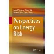 Perspectives on Energy Risk
