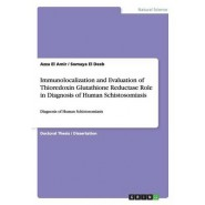 Immunolocalization and Evaluation of Thioredoxin Glutathione Reductase Role in Diagnosis of Human Schistosomiasis